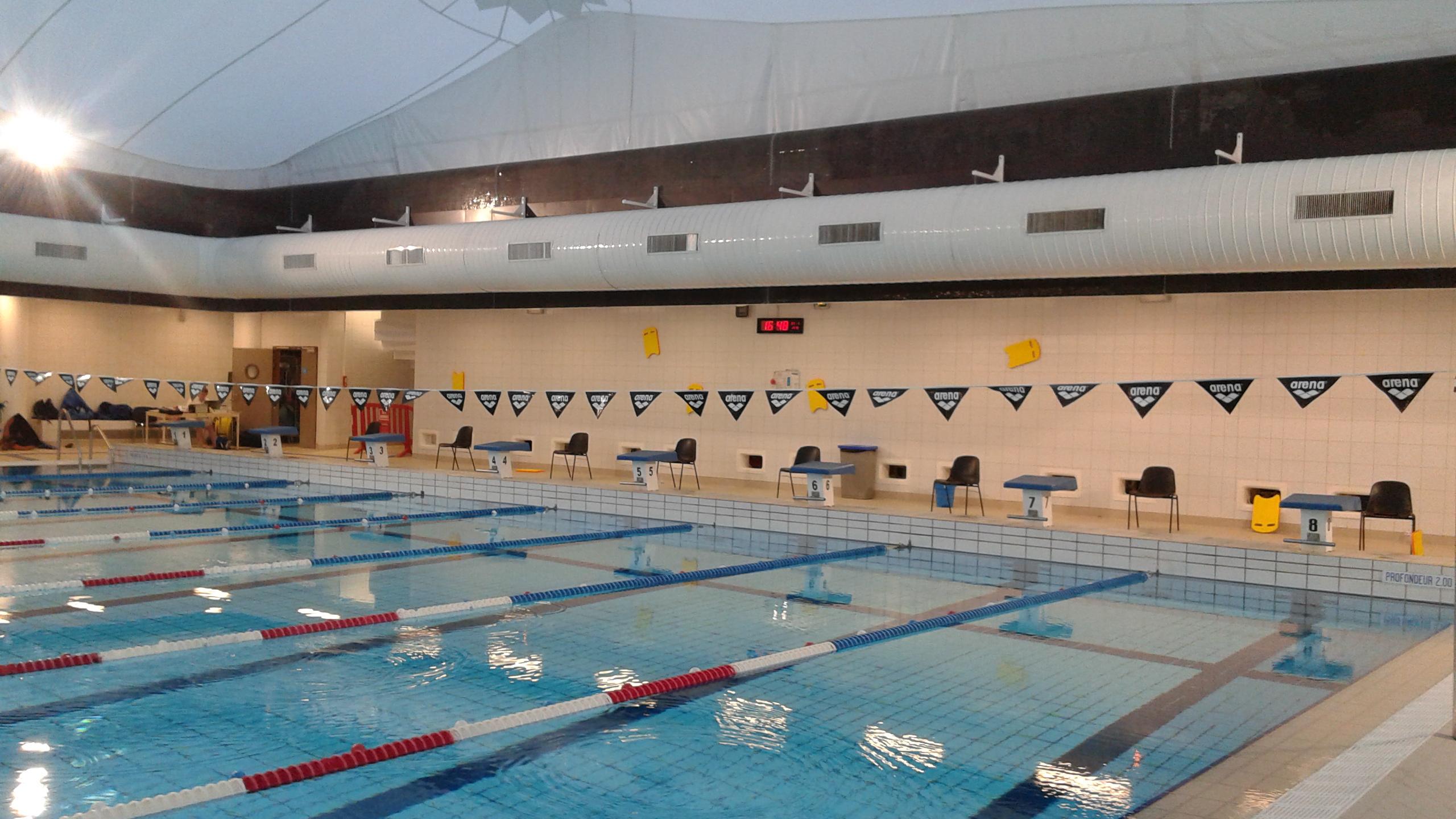 Les plots n'attendent que les nageurs et nageuses