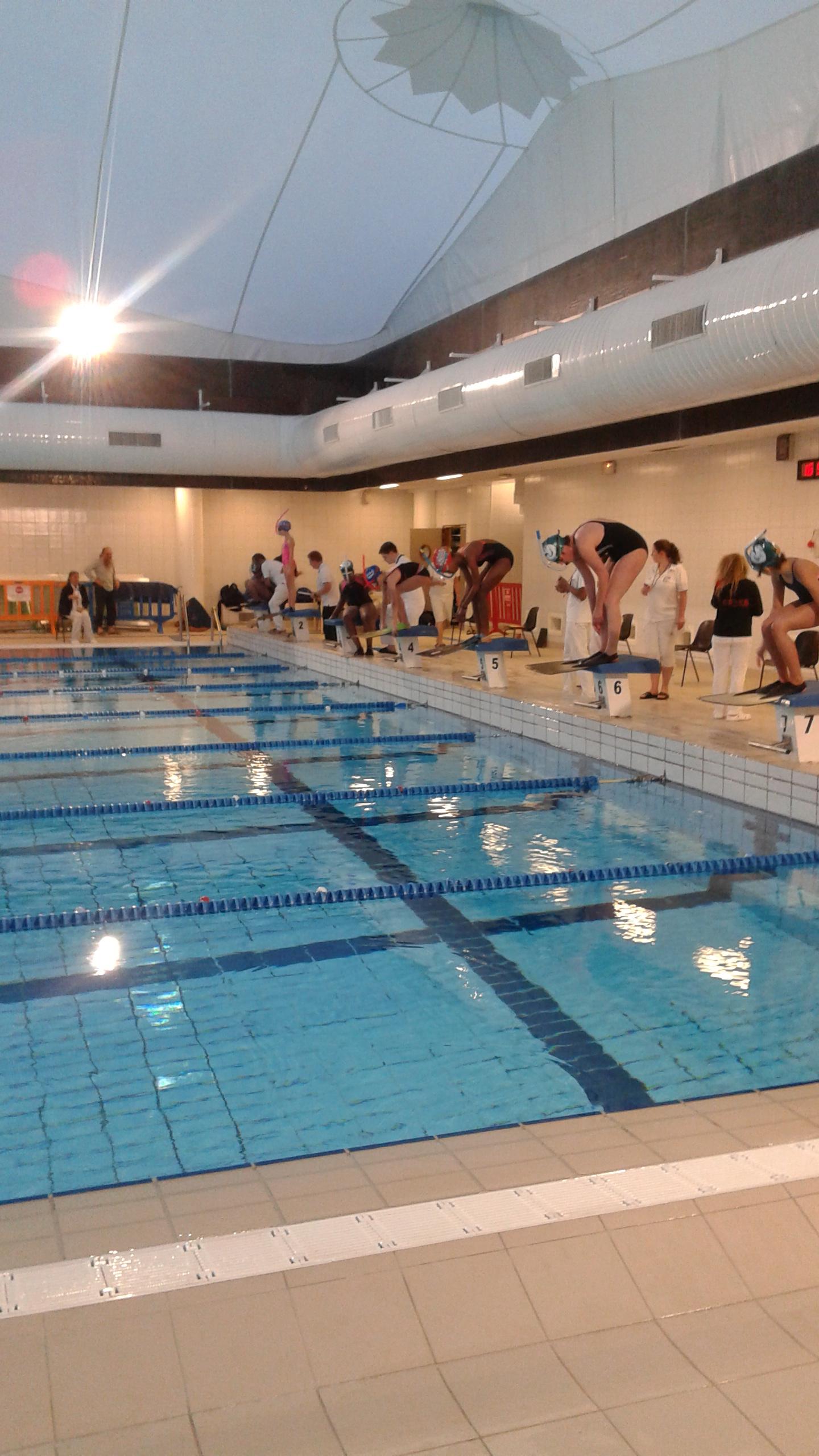 Les nageuses du CSF sont prêtes