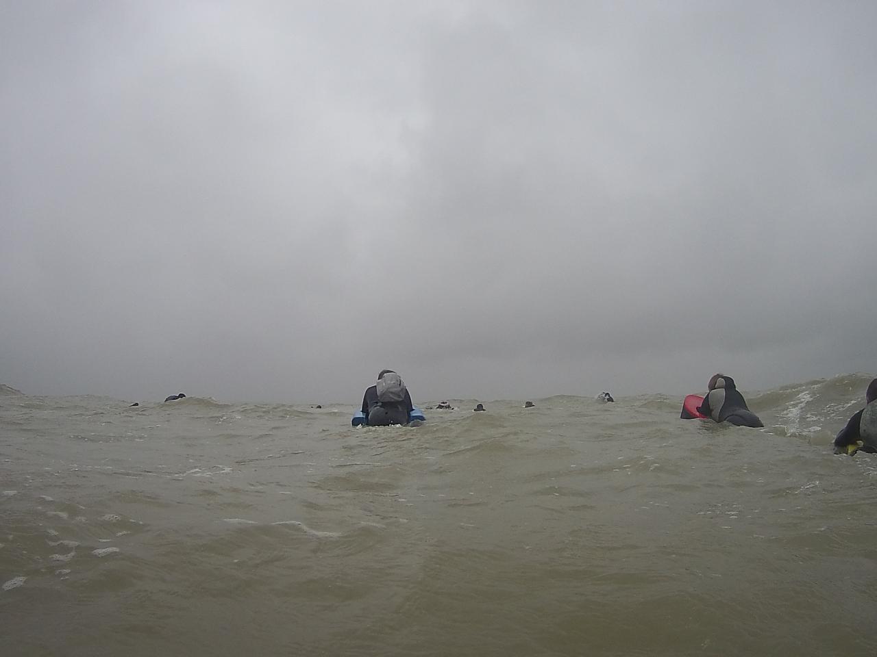 Nage sans les phoques